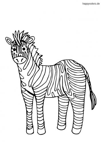 Zebra Malvorlage kostenlos » Zebras Ausmalbilder