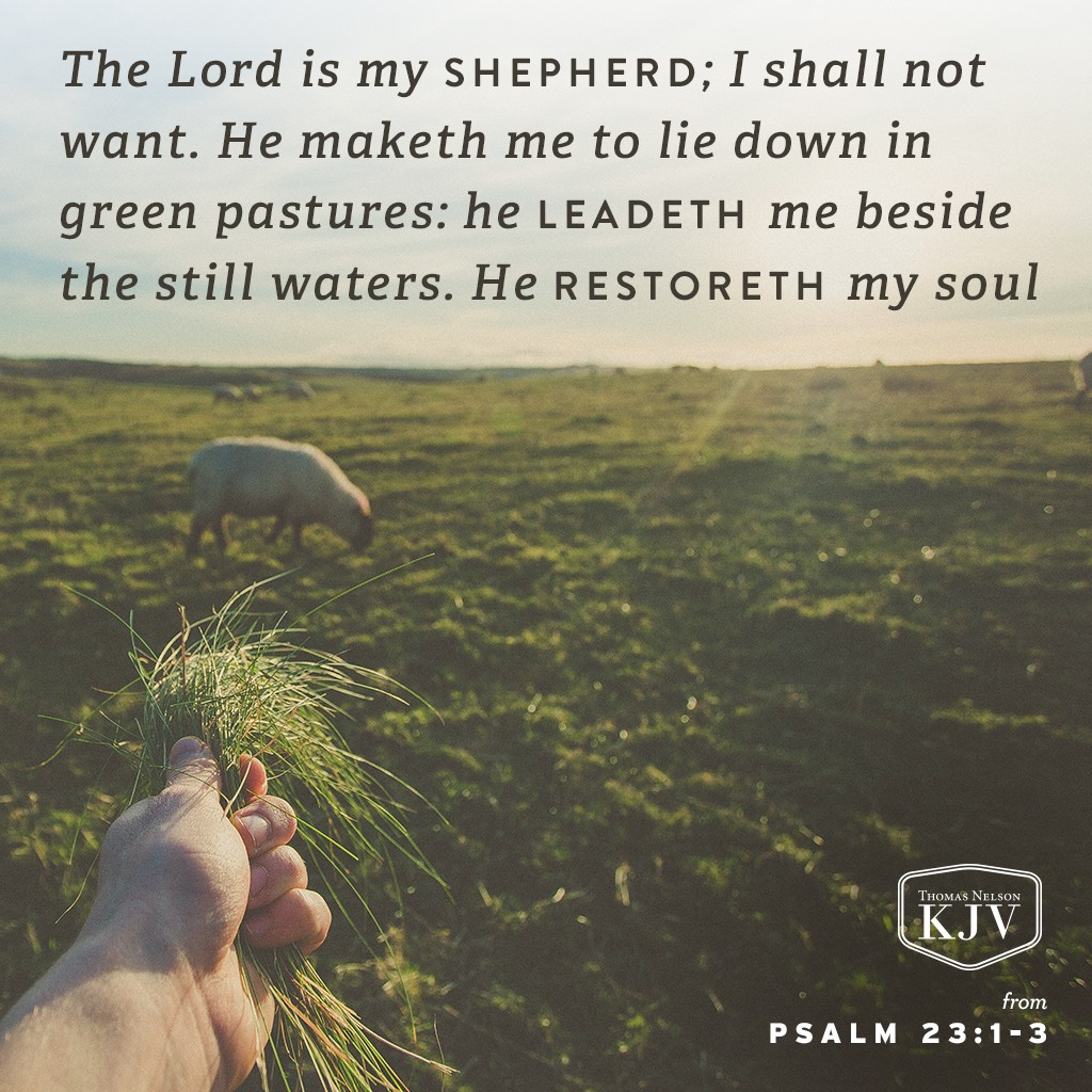 1 The Lord is my shepherd; I shall not want.  2 He maketh me to lie down in green pastures: he leadeth me beside the still waters.  3 He restoreth my soul: he leadeth me in the paths of righteousness for his name's sake.   Psalm 23:1-3