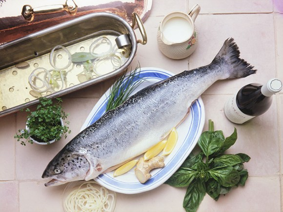Seafood & Alzheimer's Disease