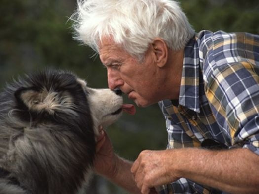 News Picture: How Pets Can Be True Lifesavers for Seniors