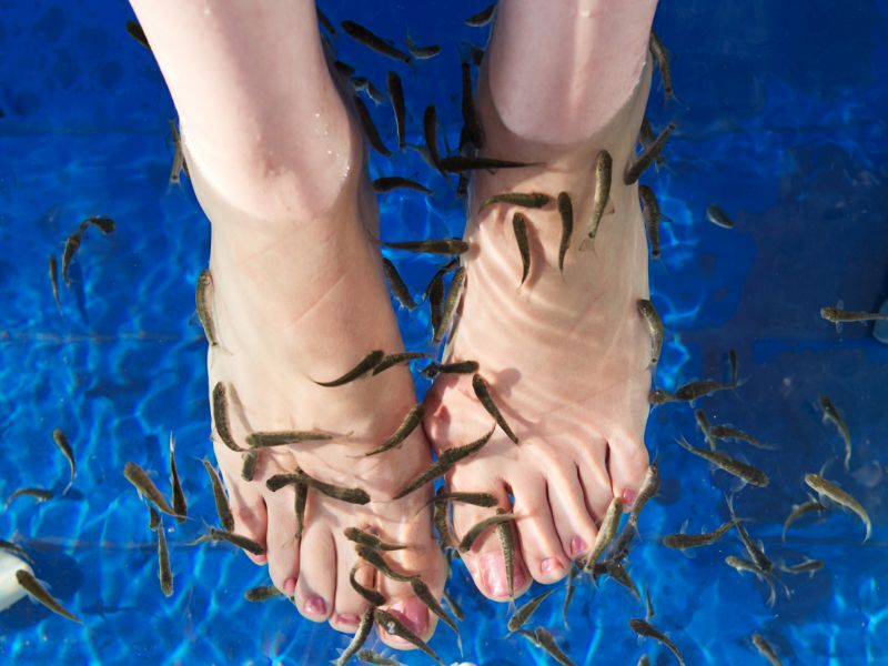 'fish pedicure' caused woman's