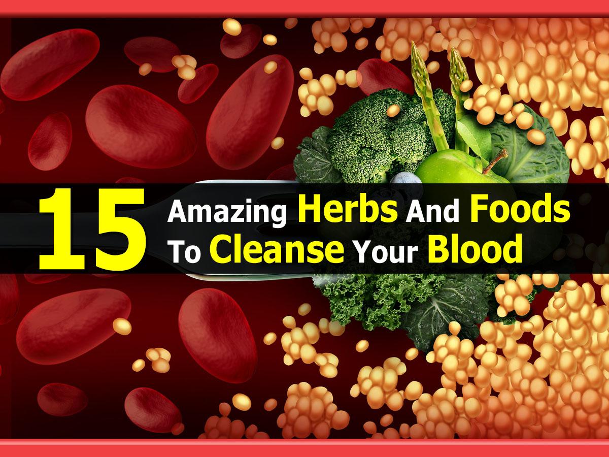 herbal-makanan-untuk-membersihkan-darah