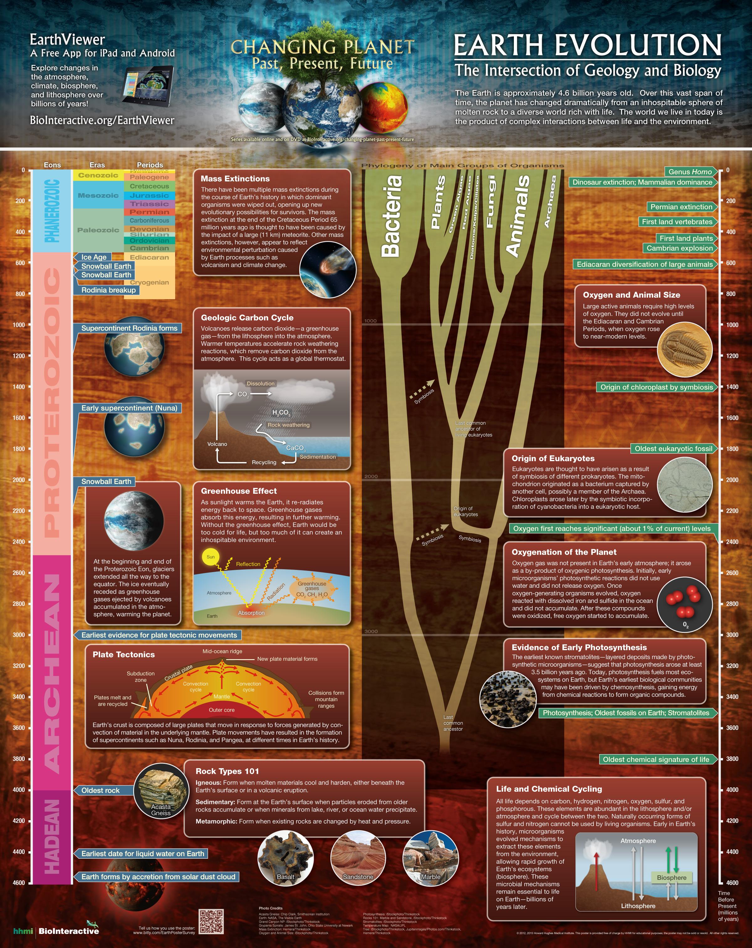 What Snew In Cosmic Ancestry Oct Dec By Brig Klyce