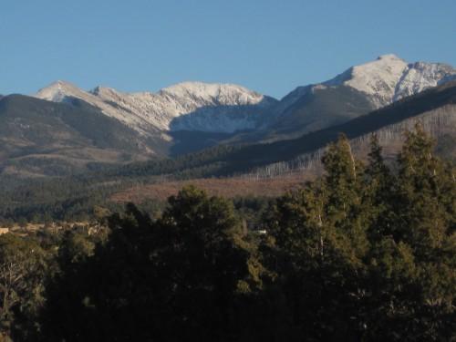Mountain Treeline