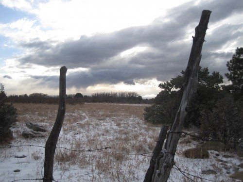 llano pasture