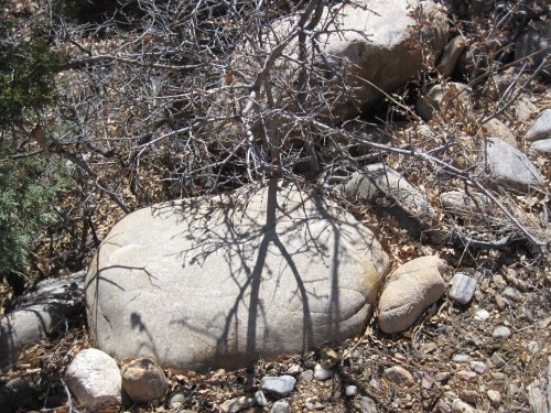 micaceous stone