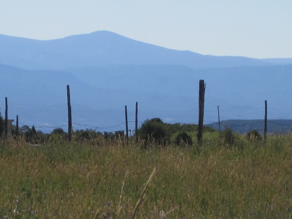 Purple Mountains and Fence