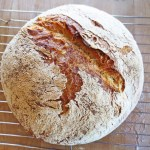 Adventures in the Art of Bread Making