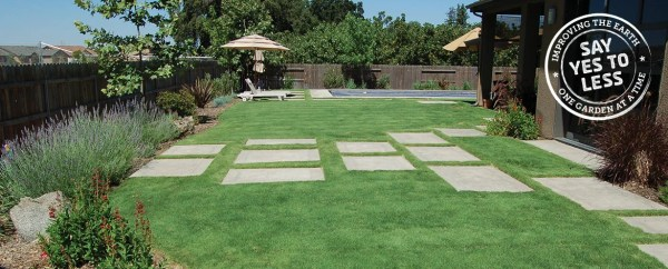 drought-resistant lawns sustainable