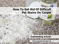 How To Get Rid Of Difficult Pet Stains On Carpet