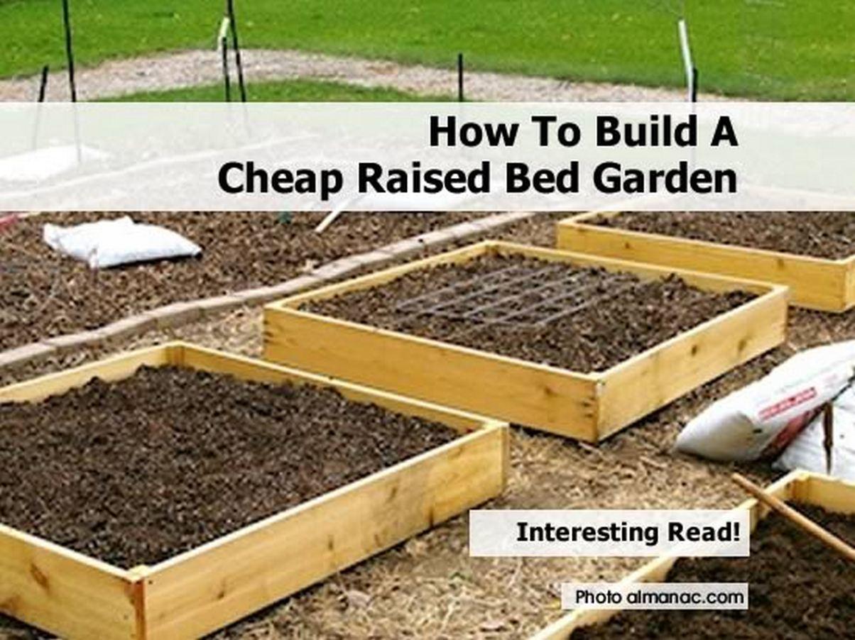 Building Raised Vegetable Garden