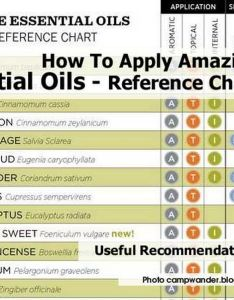 also reference guide for essential oils rh zappingtheweb