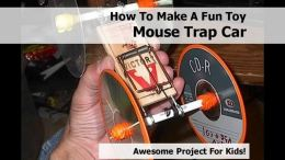 How To Make A Fun Toy Mouse Trap Ca
