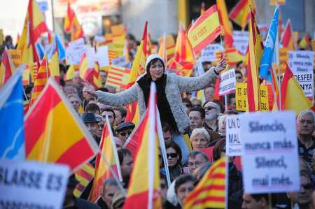 Catalans against independence during a demonstration in Barcelona on December 6, 2013 ( Josep Lago (AFP/File) )