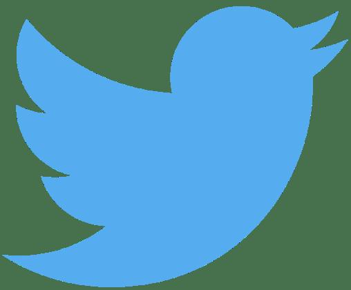 Twitter bird logo medium