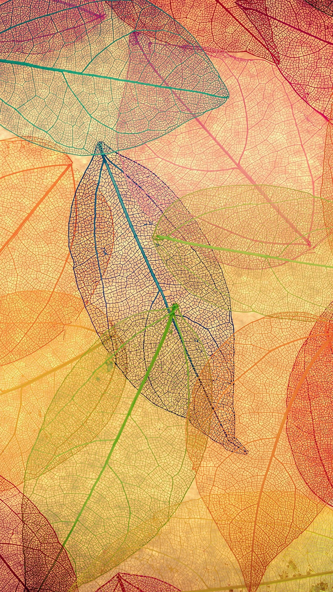 Fall Colored Background Wallpaper Wallpapers Of The Week Autumn