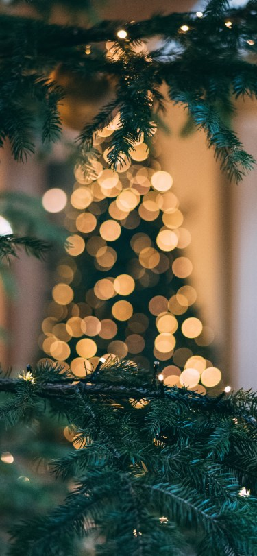 mourad-saadi-unsplash-bokeh-christmas-tree-iphone-wallpaper