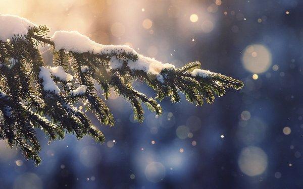 snowing-tree-blue-christmas-winter-nature-mountain-imac-27