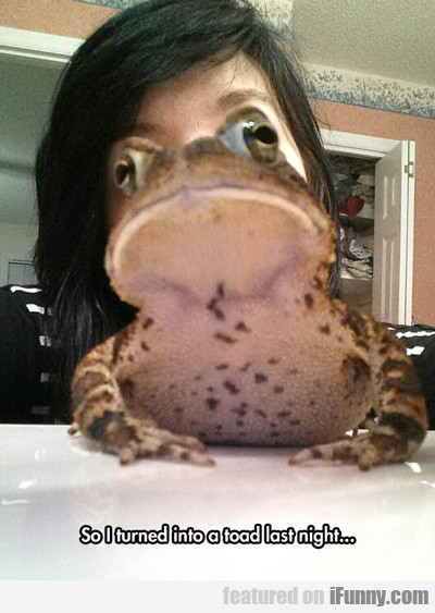 So I Turned Into A Toad Last Night...