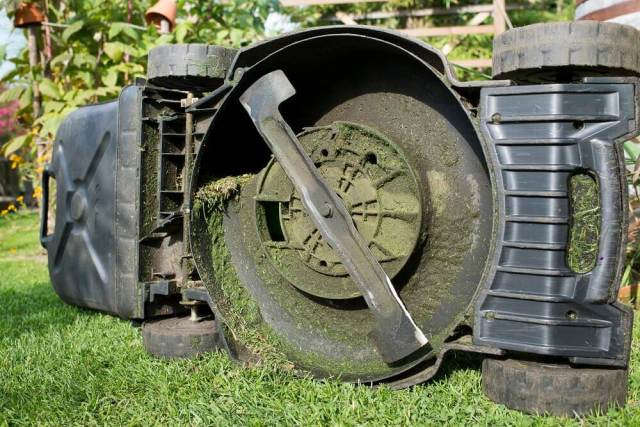 September Service Your Lawn Mower