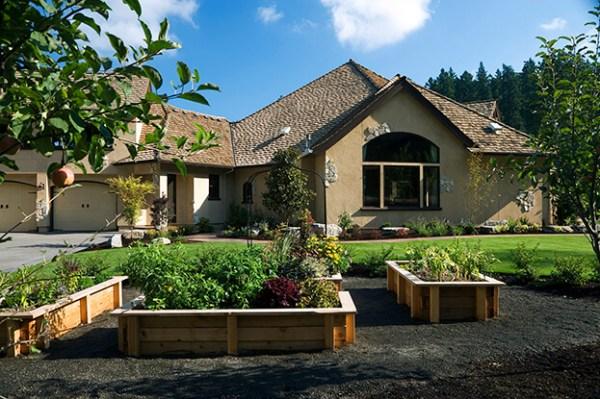 7 dog-friendly landscaping ideas