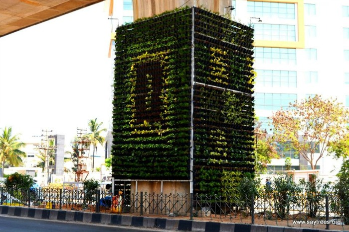 Vertical gardens bangalore के लिए चित्र परिणाम