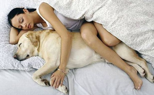Sleeping with dog