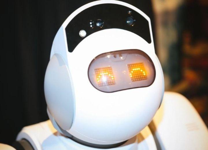 Aeolus Rosie robot