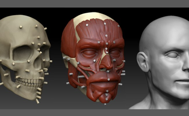 3d Character Design Human Head Image Nemesis Indie Db