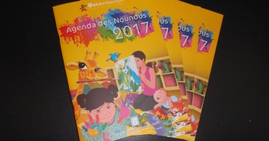 Agenda des nounous 2017 disponible au relais