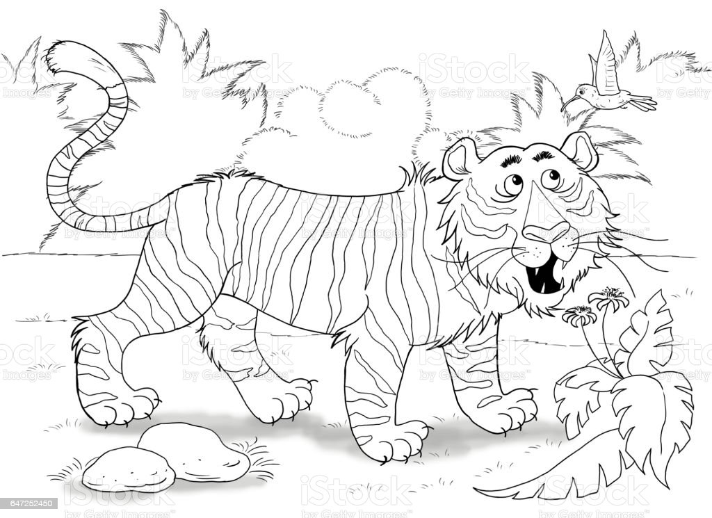 At The Zoo Cute African Animals A Tiger Illustration For