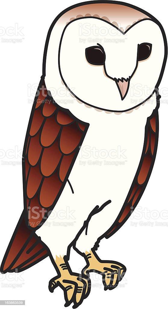 barn owl illustrations royalty-free