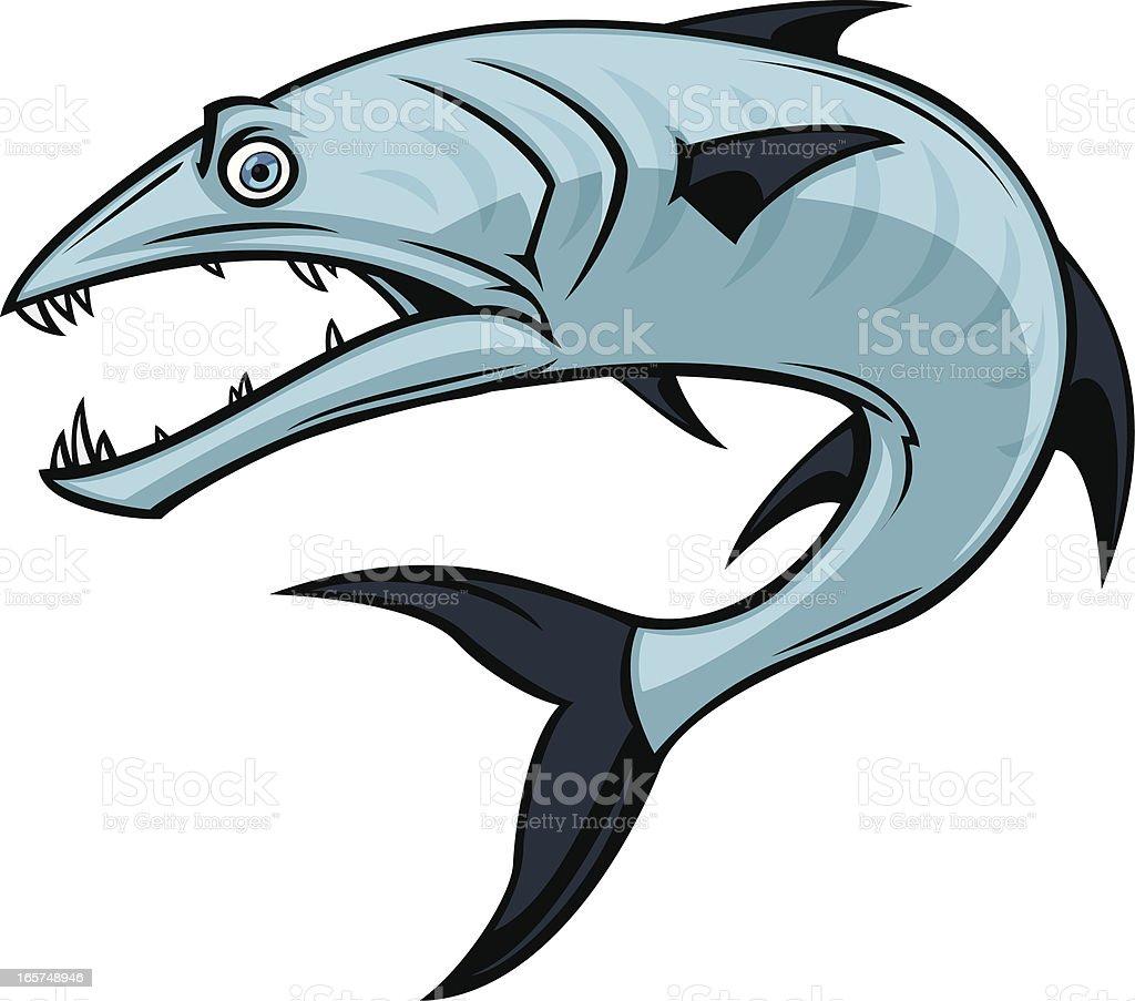 barracuda illustrations royalty-free