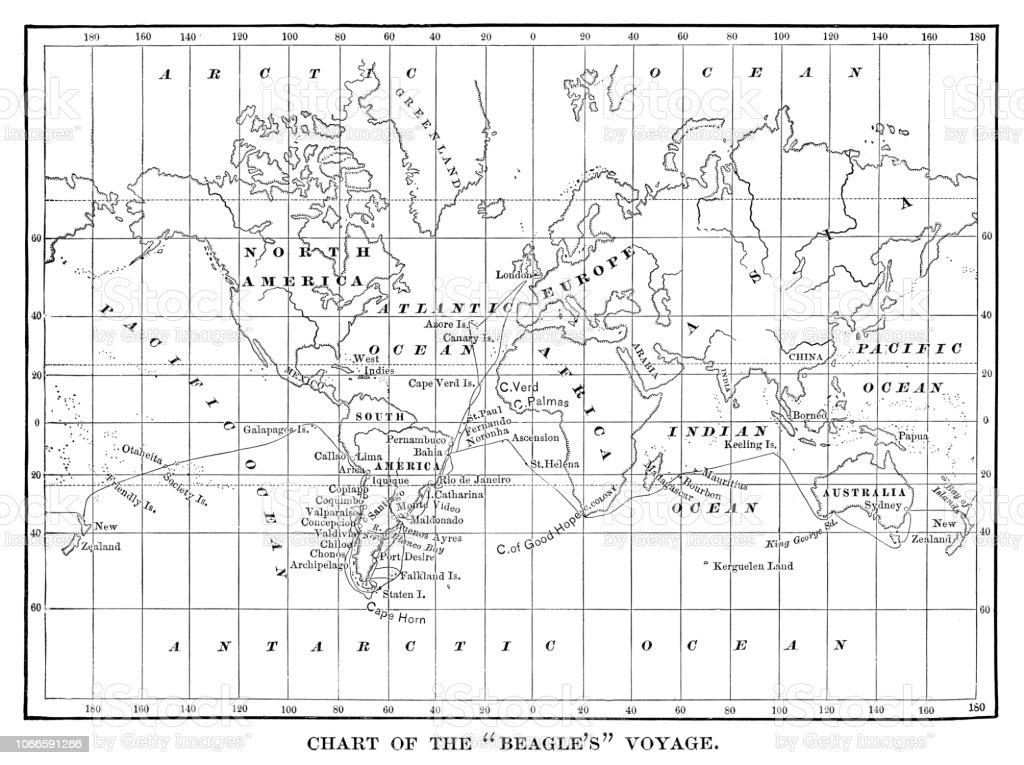 Chart Of The Beagles Voyage Charles Darwin Travel Map
