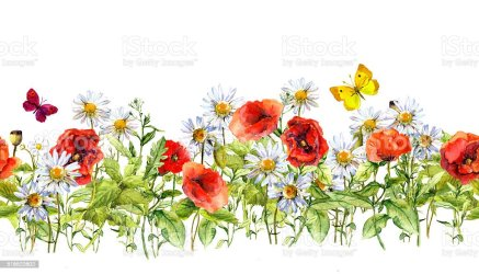 horizontal border floral flowers watercolor grass herbs frame seamless meadow edge botany bluebell backgrounds