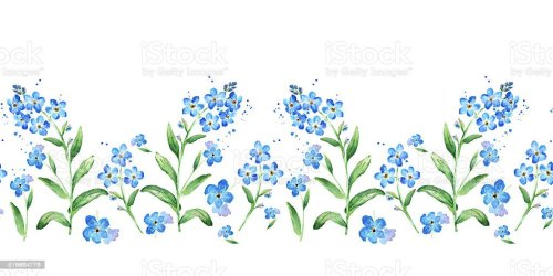 horizontal border floral watercolor forget frame illustration seamless vector flower clip flowers single illustrations blossom forgetmenot pattern istock rose graphics