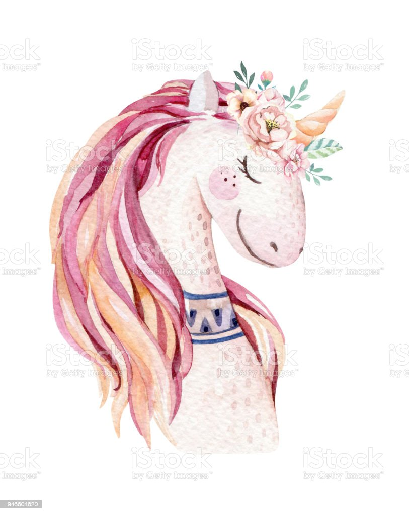 medium resolution of isolated cute watercolor unicorn clipart with flowers nursery unicorns illustration princess rainbow poster