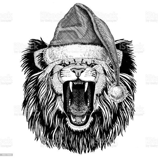 4a7443a4094 Luna Lovegood Lion Hat. Lion Wearing Christmas Hat Year Eve Merry