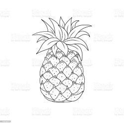 Outline Pineapple Tropical Fruit Line Art Illustration Coloring Book Page Stock Illustration Download Image Now iStock
