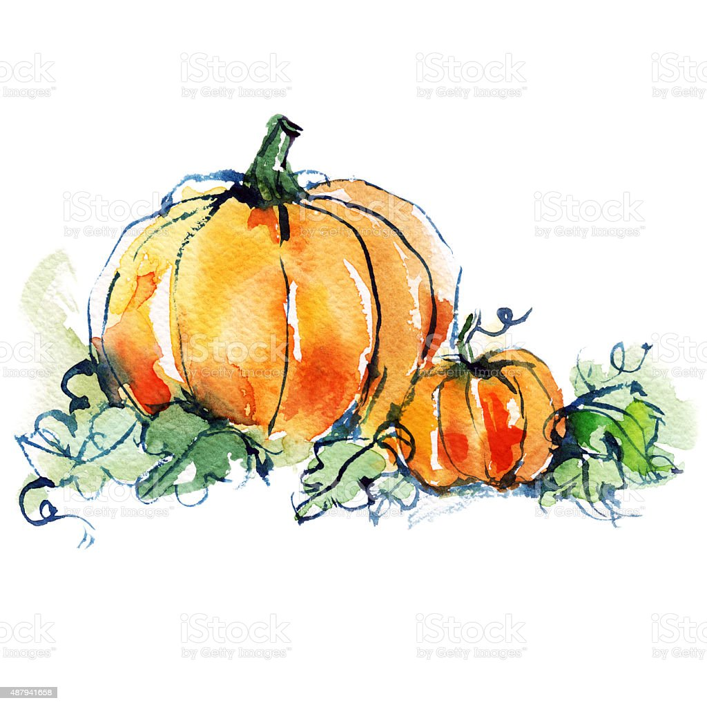 pumpkin illustrations royalty-free