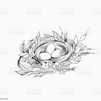 Sketch Of A Birds Nest With Eggs On A White Background ...