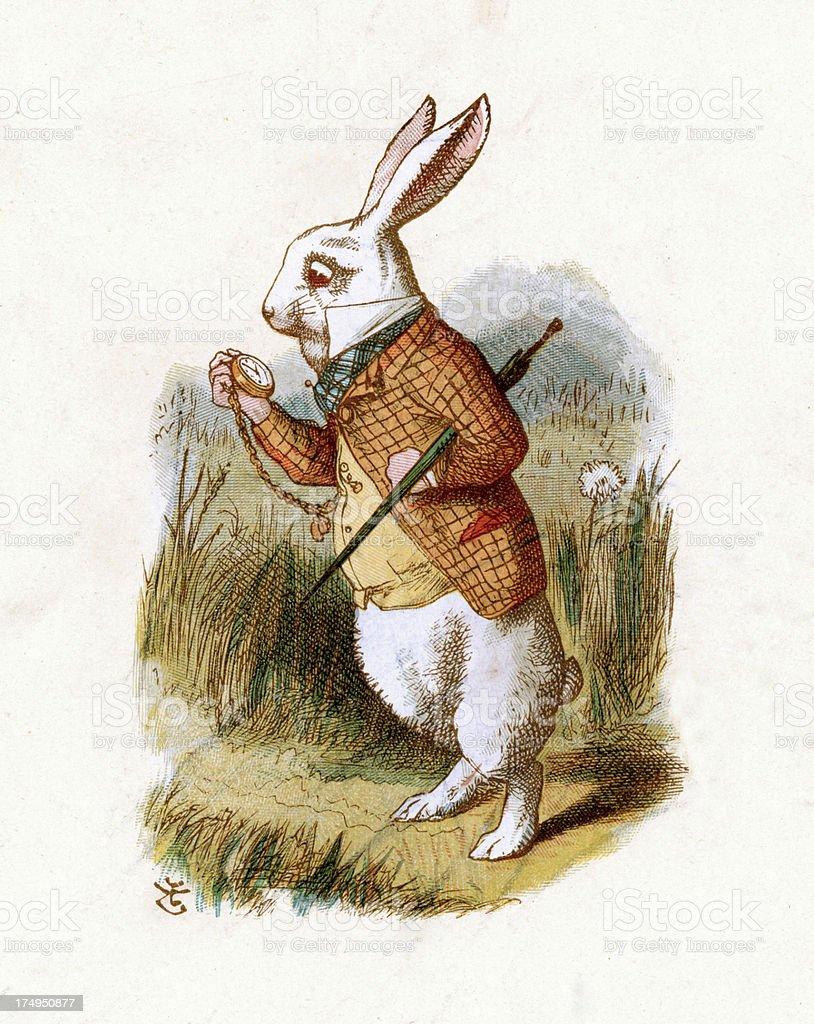 Lapin Dans Alice Au Pays Des Merveilles : lapin, alice, merveilles, Blanc, Lapinalice, Merveilles, Vecteurs, Libres, Droits, D'images, Vectorielles, Alice, IStock
