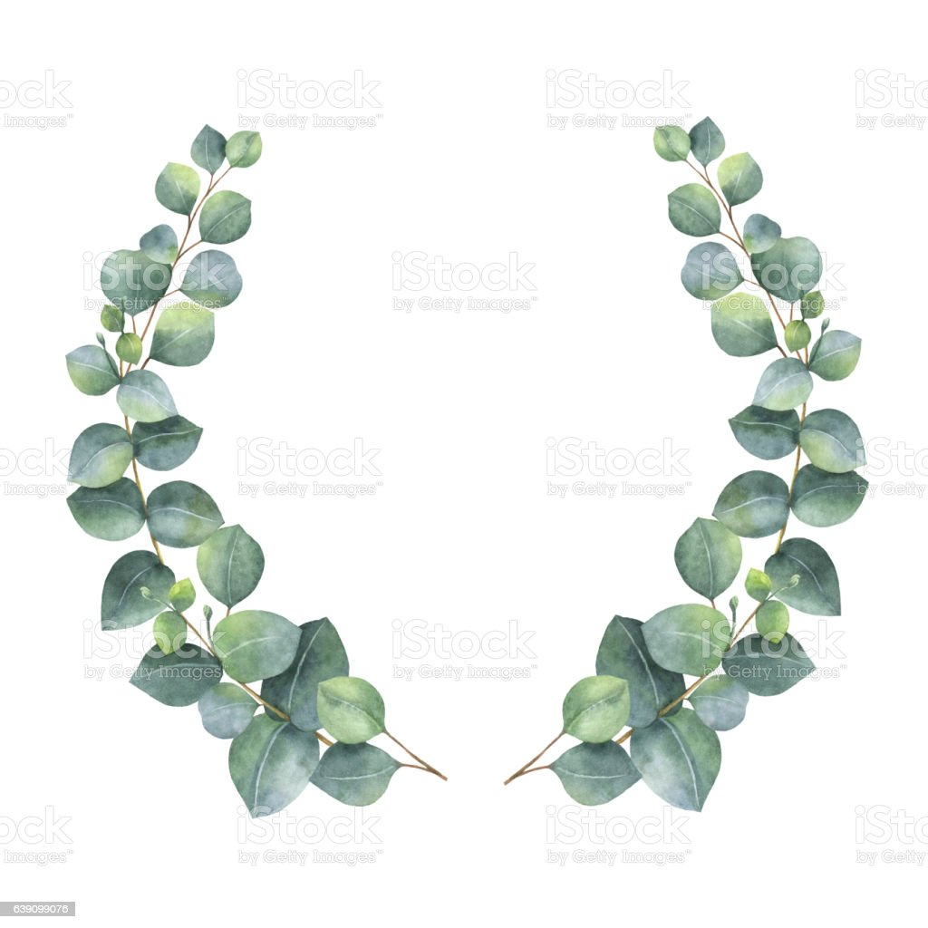 Watercolor Wreath With Silver Dollar Eucalyptus Leaves And