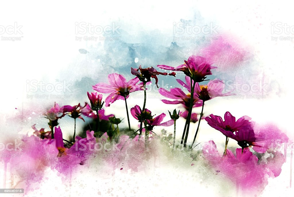 best watercolor flowers stock