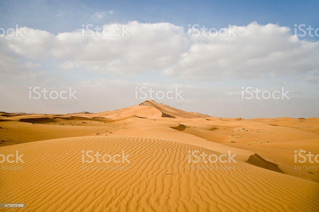 amazing desert landscape stock