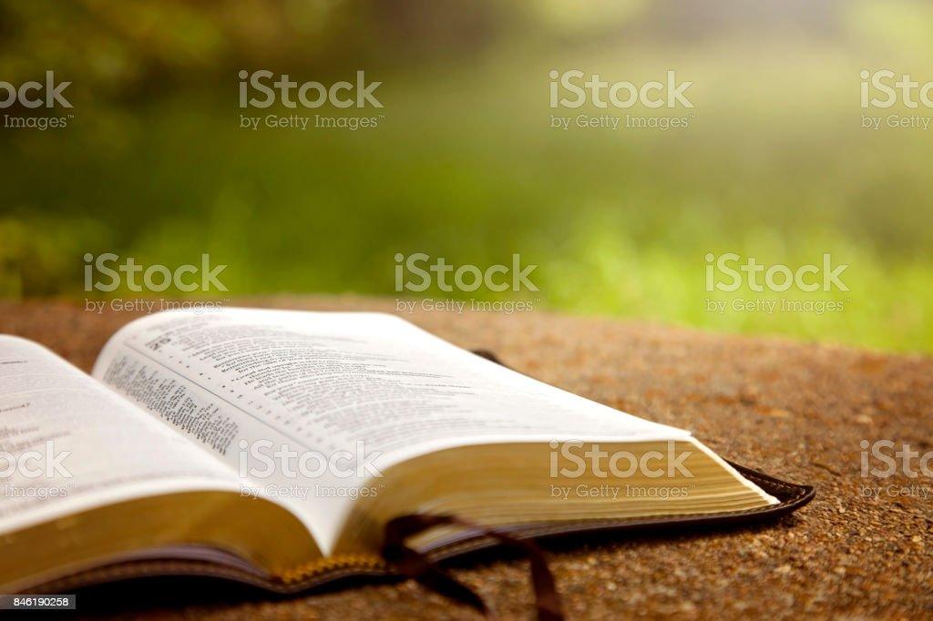 best bible stock photos