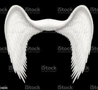 Royalty Free Angel Wings Pictures, Images and Stock Photos ...