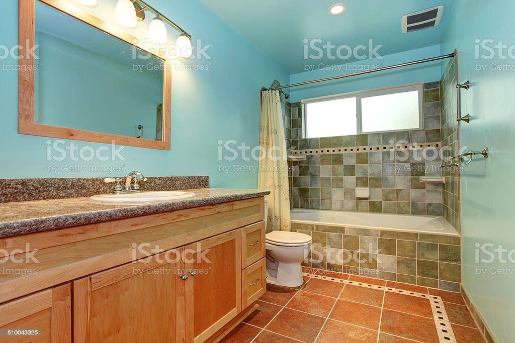 https www istockphoto com fr photo bleu lumineux de couleur dans la salle de bains avec carrelage mur bord c3 a9e de vert gm510043325 46093696