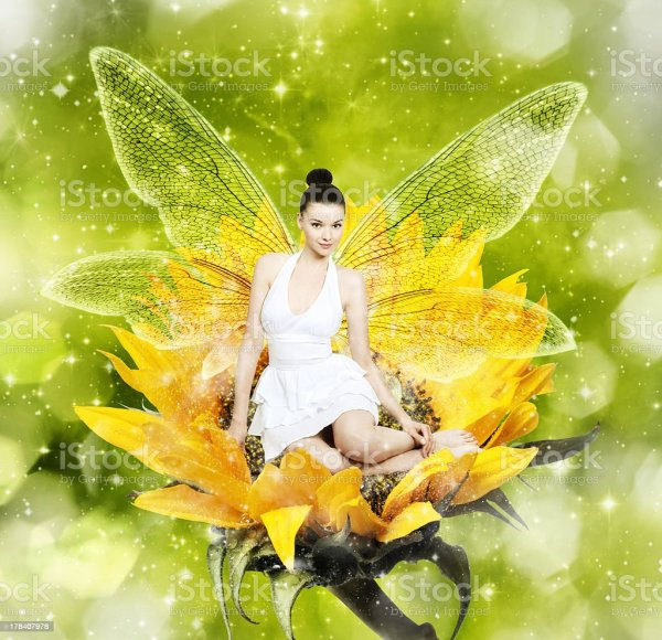 Beautiful Young Woman Summer Fairy Sunflower Stock