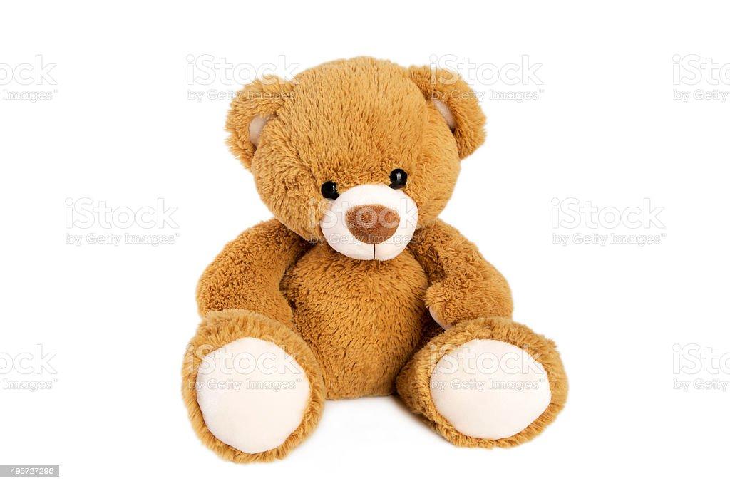 best teddy bear stock